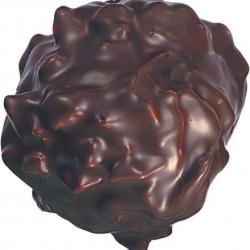 Gros Rocher praliné chocolat noir
