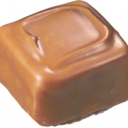 praliné au chocolat au lait