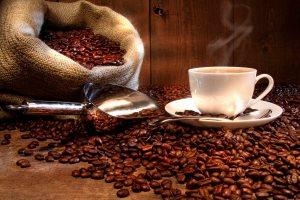 Nos cafés grands crus