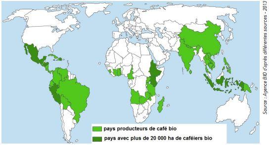 cafe bio carte producteurs